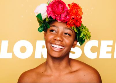 Blogar, decorar, florescer. Conteúdo para quem cria conteúdo.