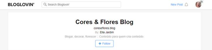 Como seu tela aparecerá após revindicar seu blog no Bloglovin'